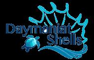 Daymaniat Shells